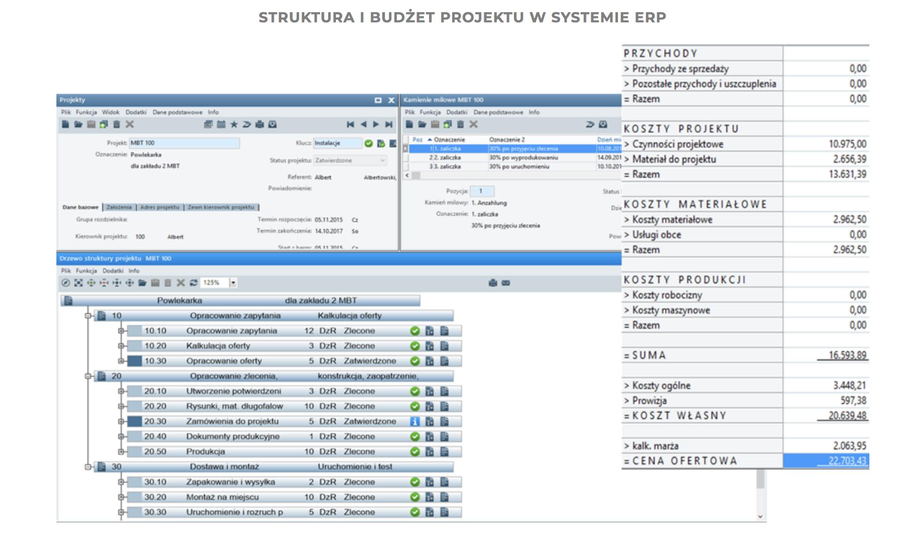 struktura i budzet projektu w systemie erppng