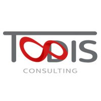 Todis Consulting